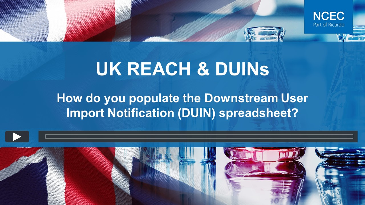 How do you populate the Downstream User Import Notification (DUIN) spreadsheet?